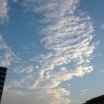 湘南ジョギング走記(9月総括)