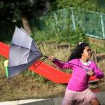 湘南地域に住んでる人必見!雨の日の傘なら富山サンダーでしょ!